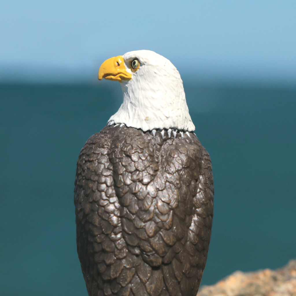 Papo Bald Sea Eagle