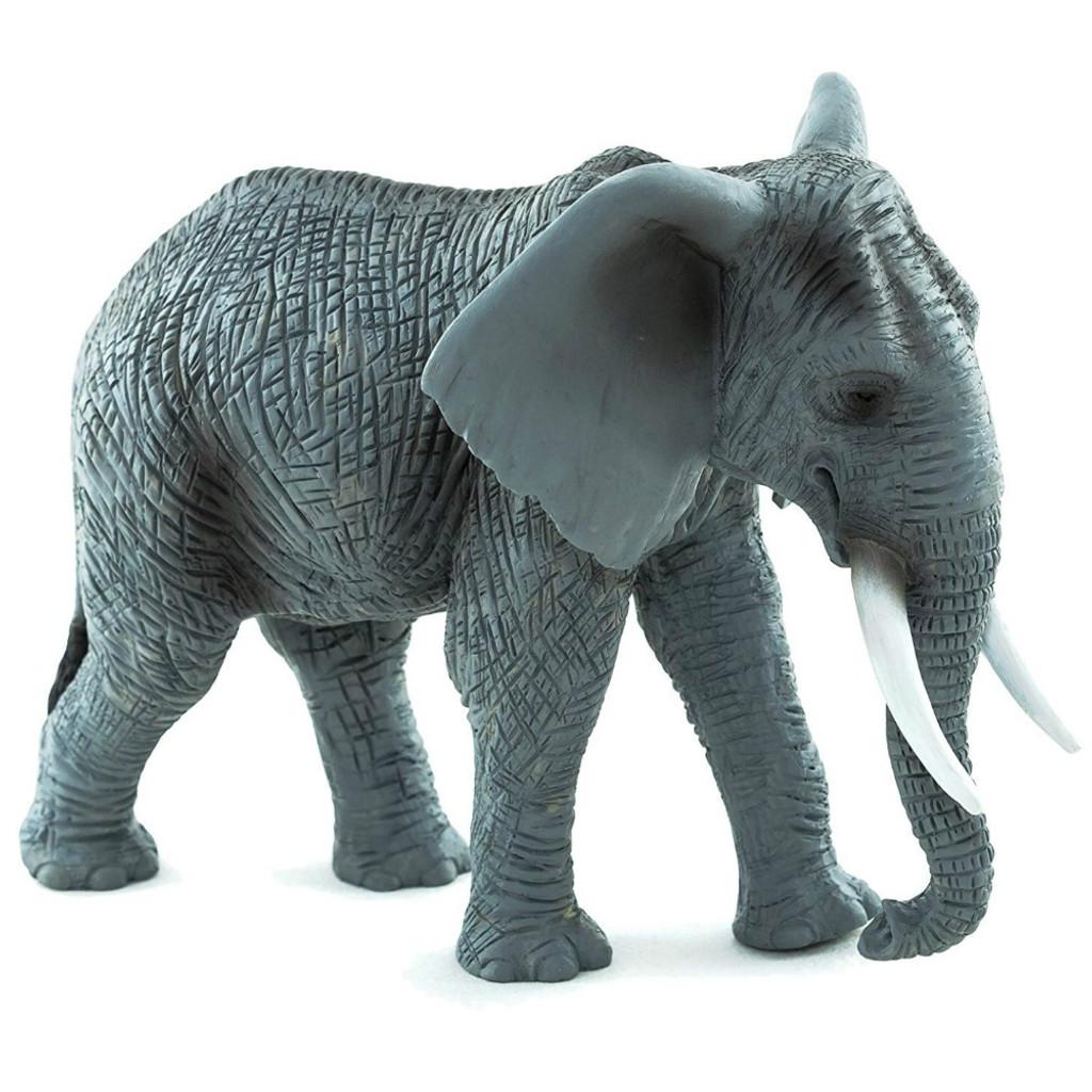 Mojo African Elephant 2015
