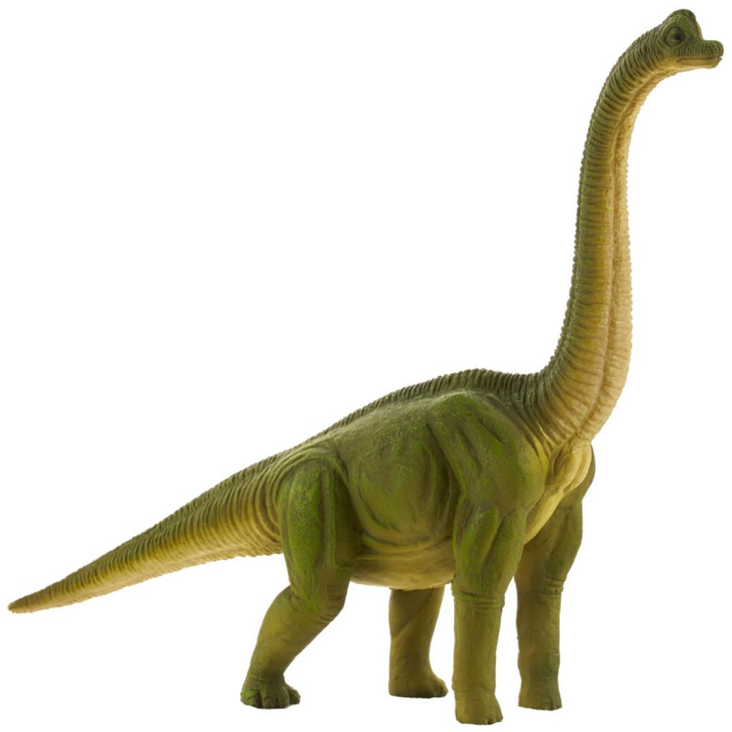 Brachiosaurus Mojo