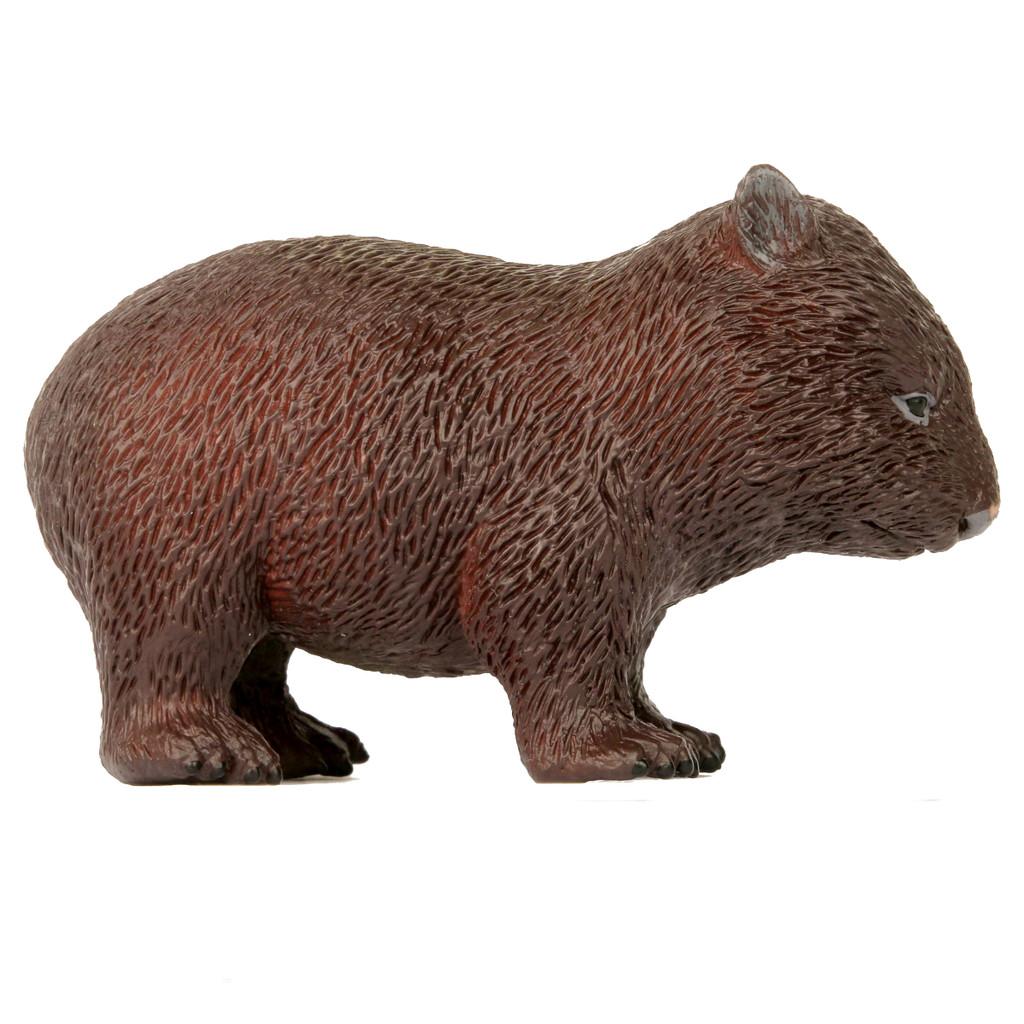 Large Wombat