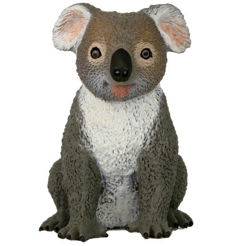 Science and Nature Large Koala