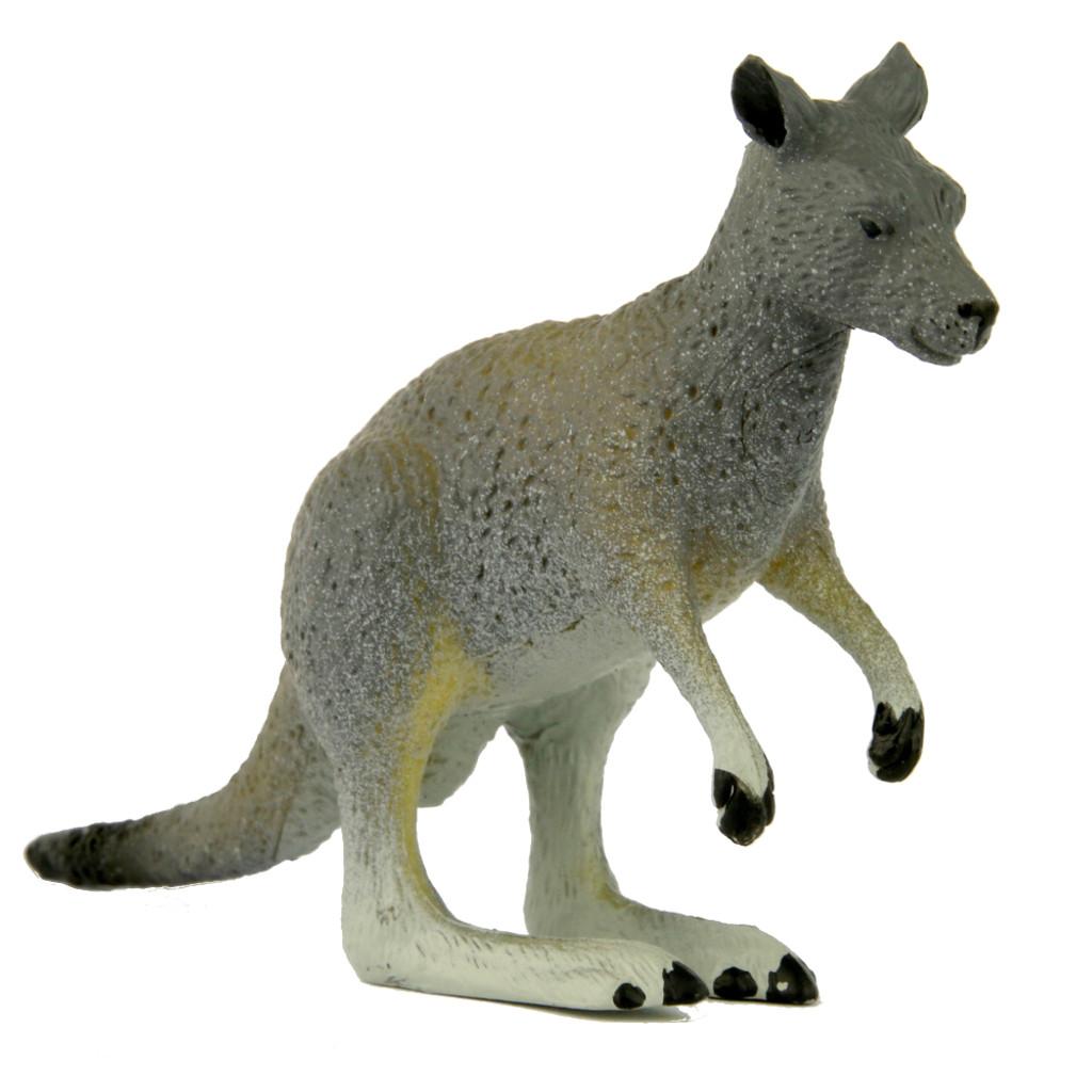 Science and Nature Small Kangaroo