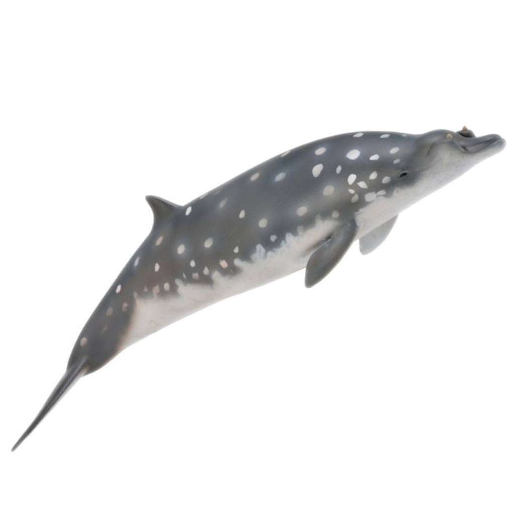 CollectA Blainvilles Beaked Whale