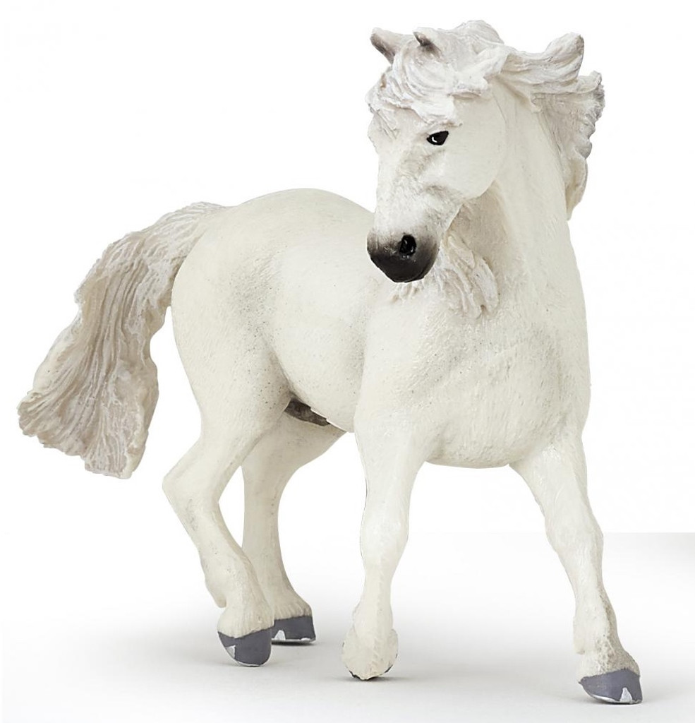 Camargue Horse White Mare
