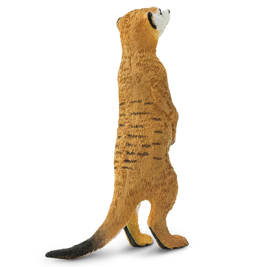 Safari Ltd Meerkat