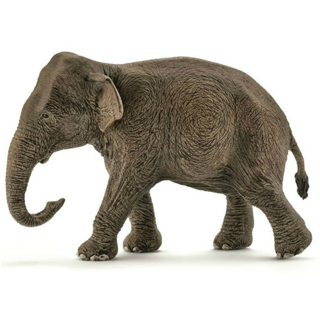 Schleich Asian Elephant Cow