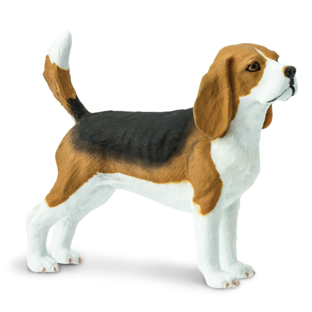 Safari Ltd Beagle