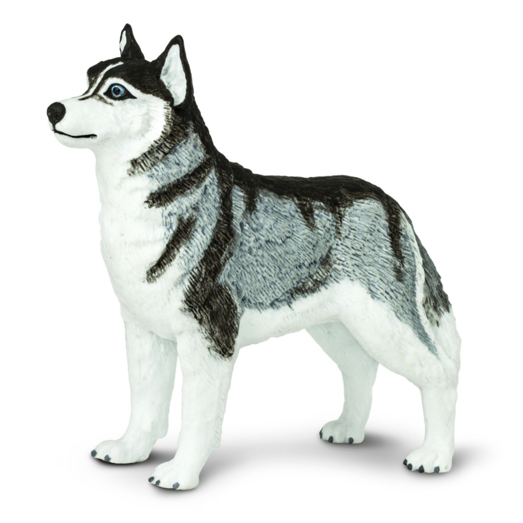 Safari Ltd Siberian Husky