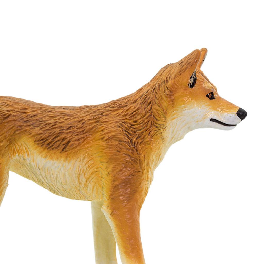 Safari Ltd Dingo