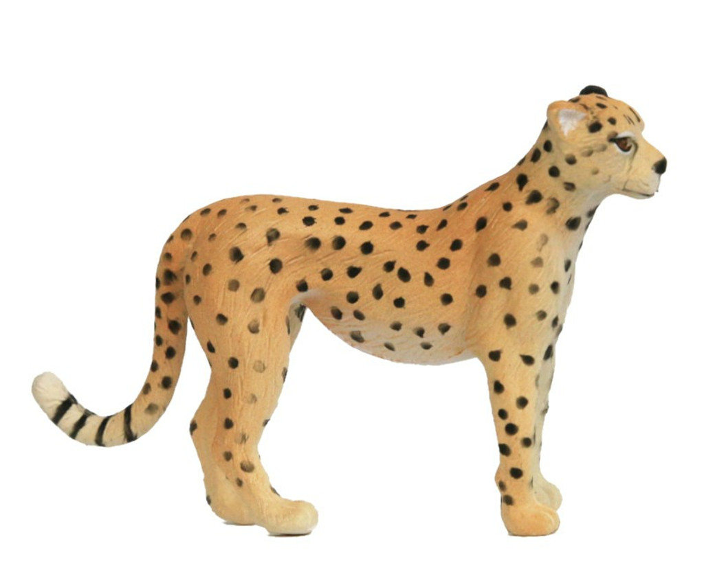 Cheetah SN