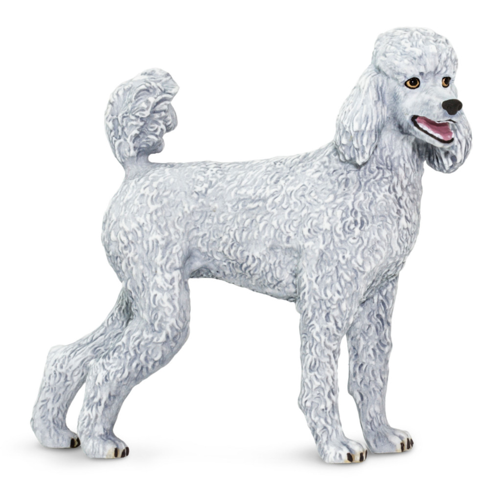 Safari Ltd Poodle