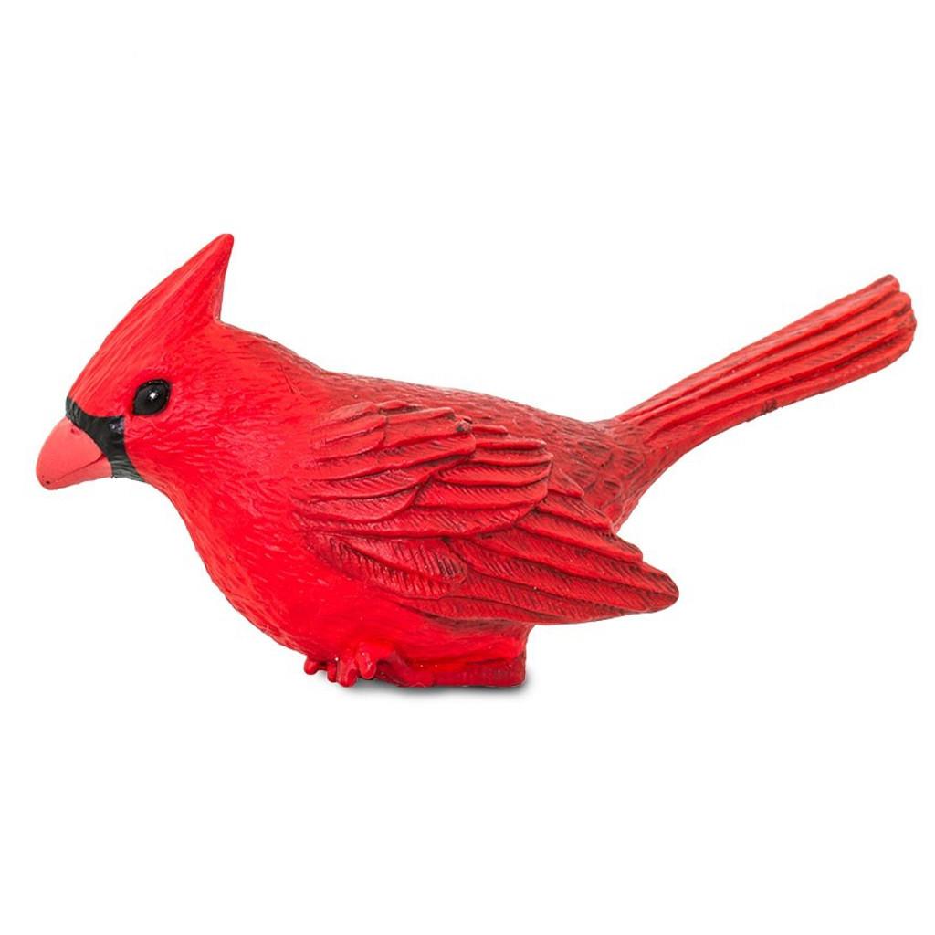 Cardinal Jumbo