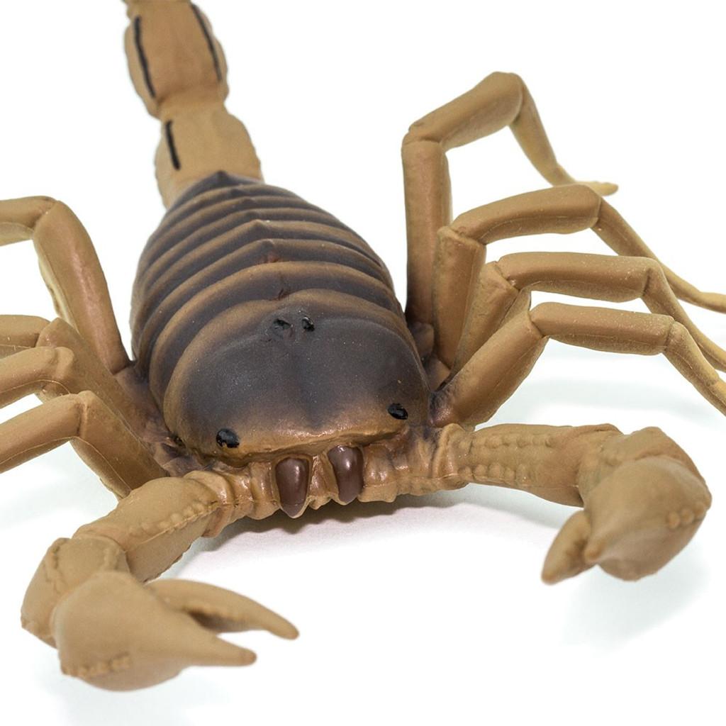 Safari Ltd Scorpion IC