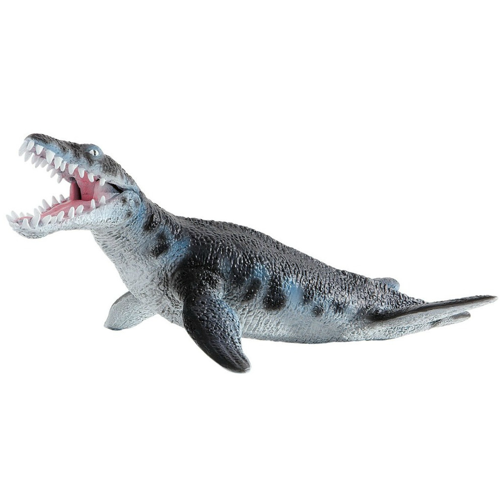 Liopleurodon Medium