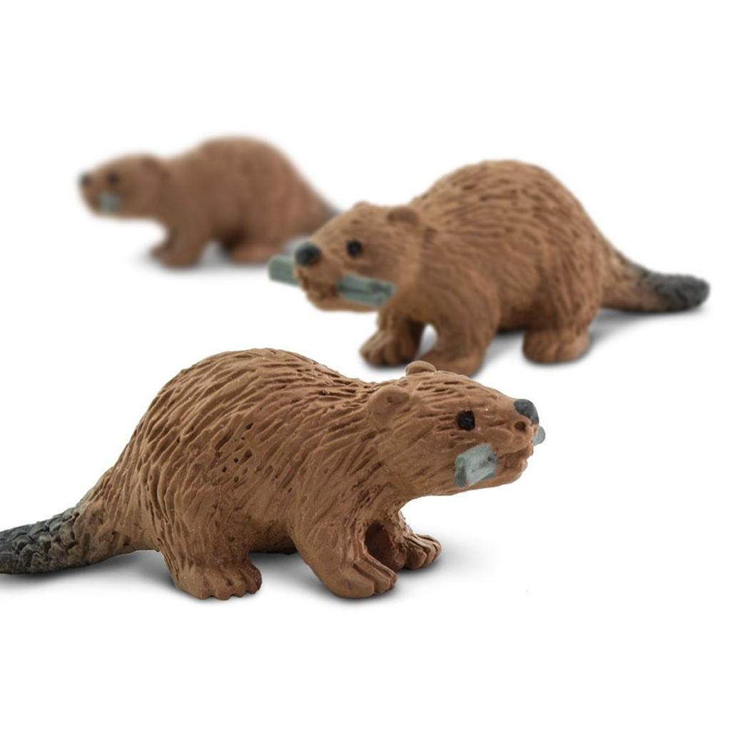 Mini Beavers