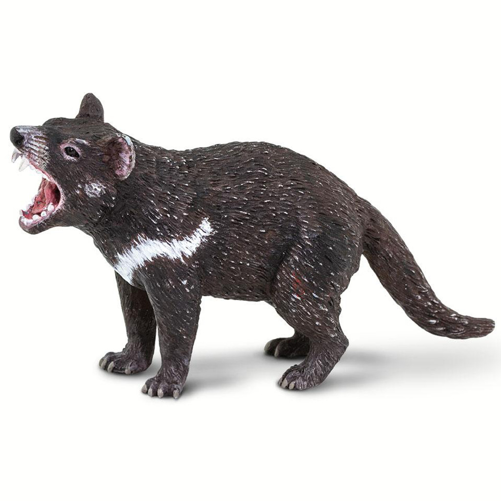 Safari Ltd Tasmanian Devil