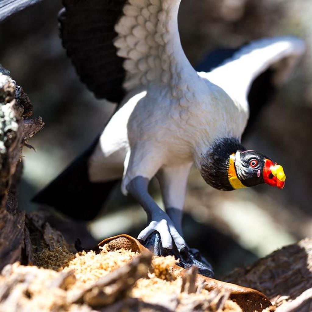 Safari Ltd King Vulture