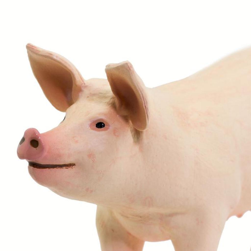 Safari Ltd Large White Pig