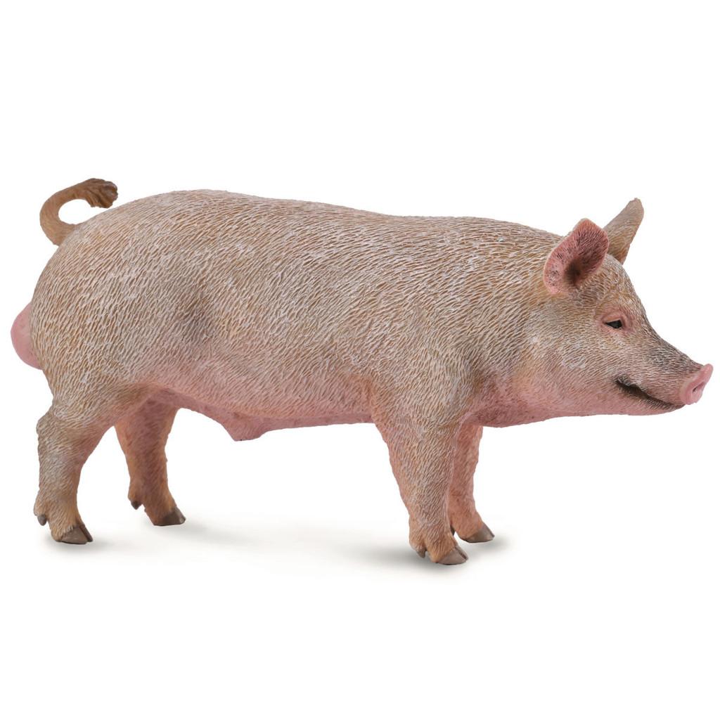 Boar CollectA