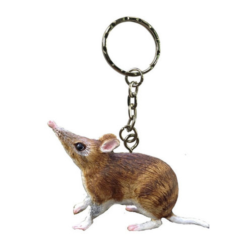 Science and Nature Bandicoot Keychain