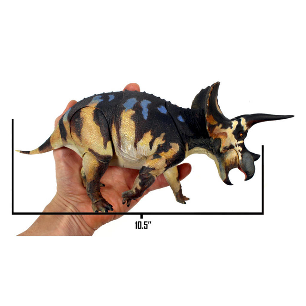 Creative Beasts Triceratops size