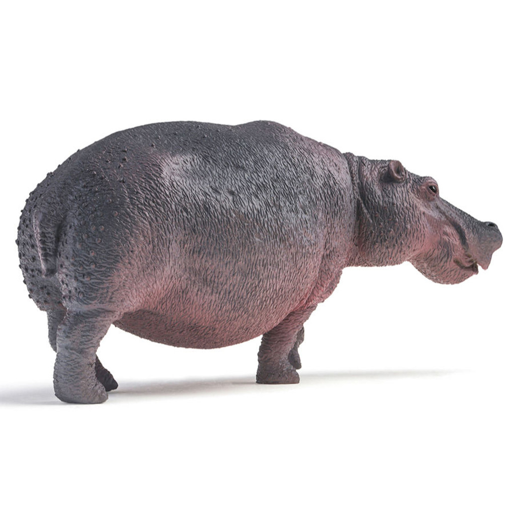 PNSO Dunkey the Hippopotamus side view