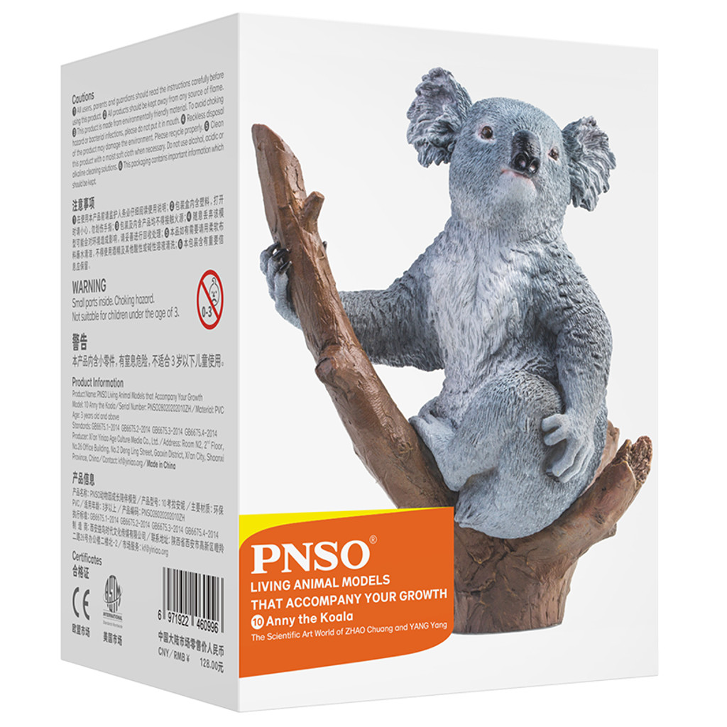 PNSO Anny the Koala model box back view
