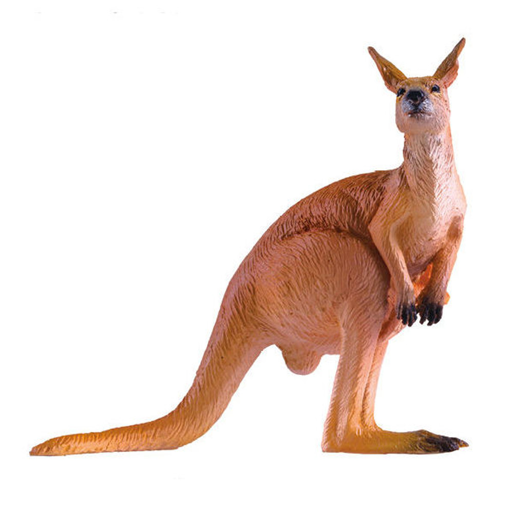 PNSO Noce the Red Kangaroo