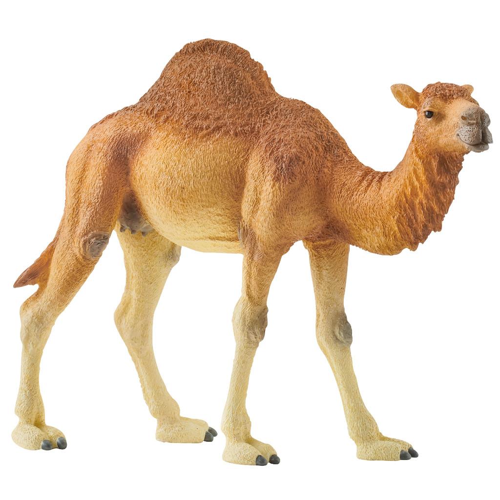Schleich 14832 Dromedary Camel
