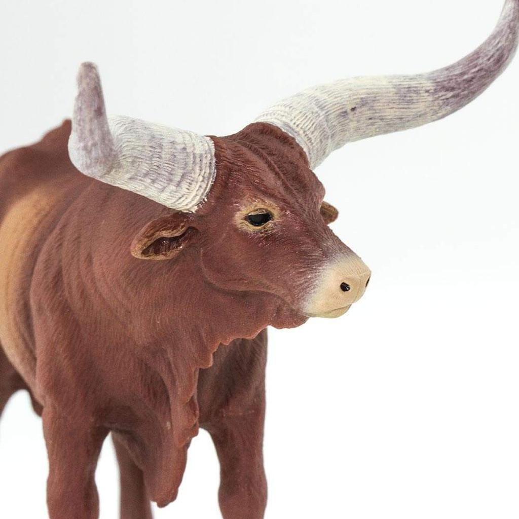 Safari Ltd Watusi Bull closeup