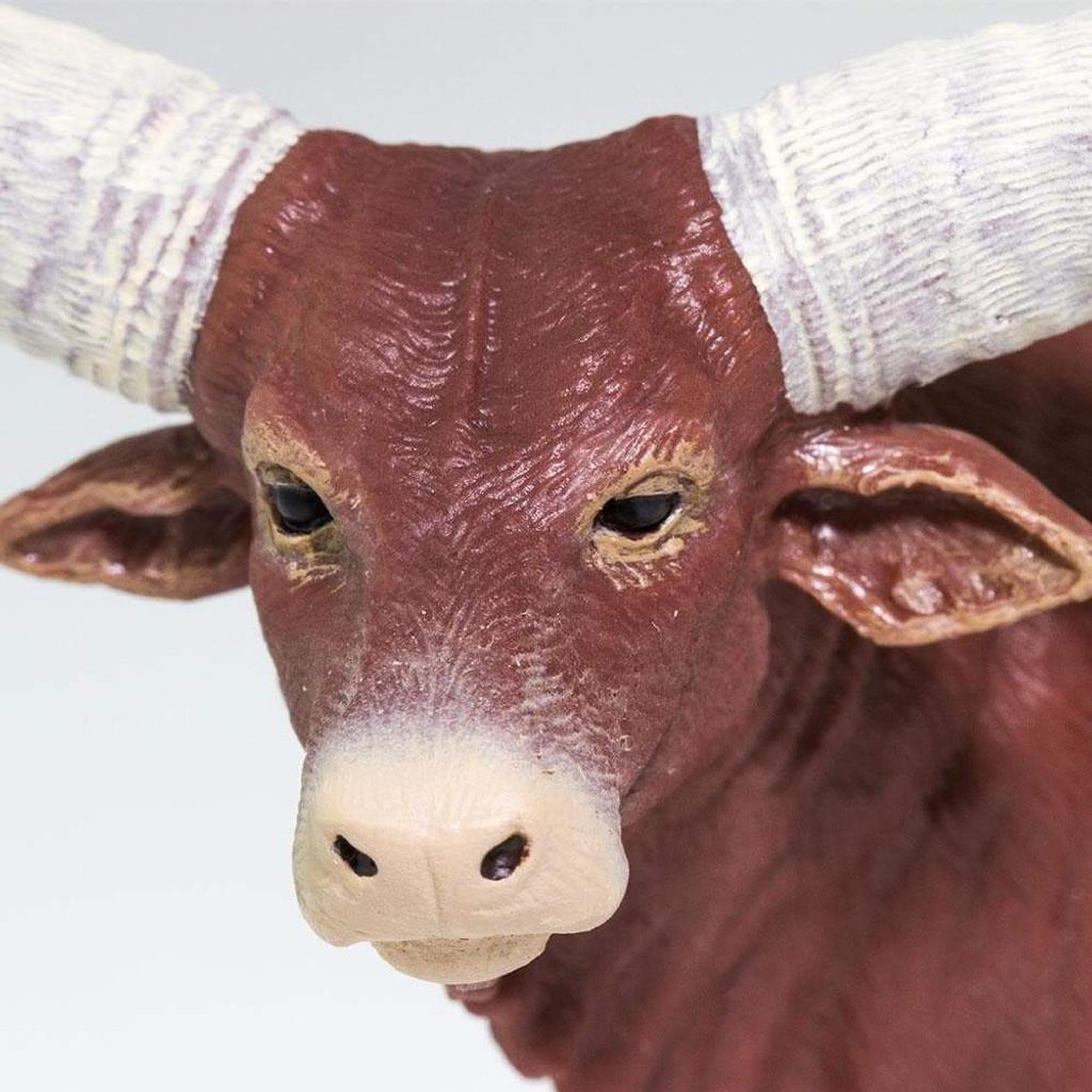 Safari Ltd Watusi Bull face