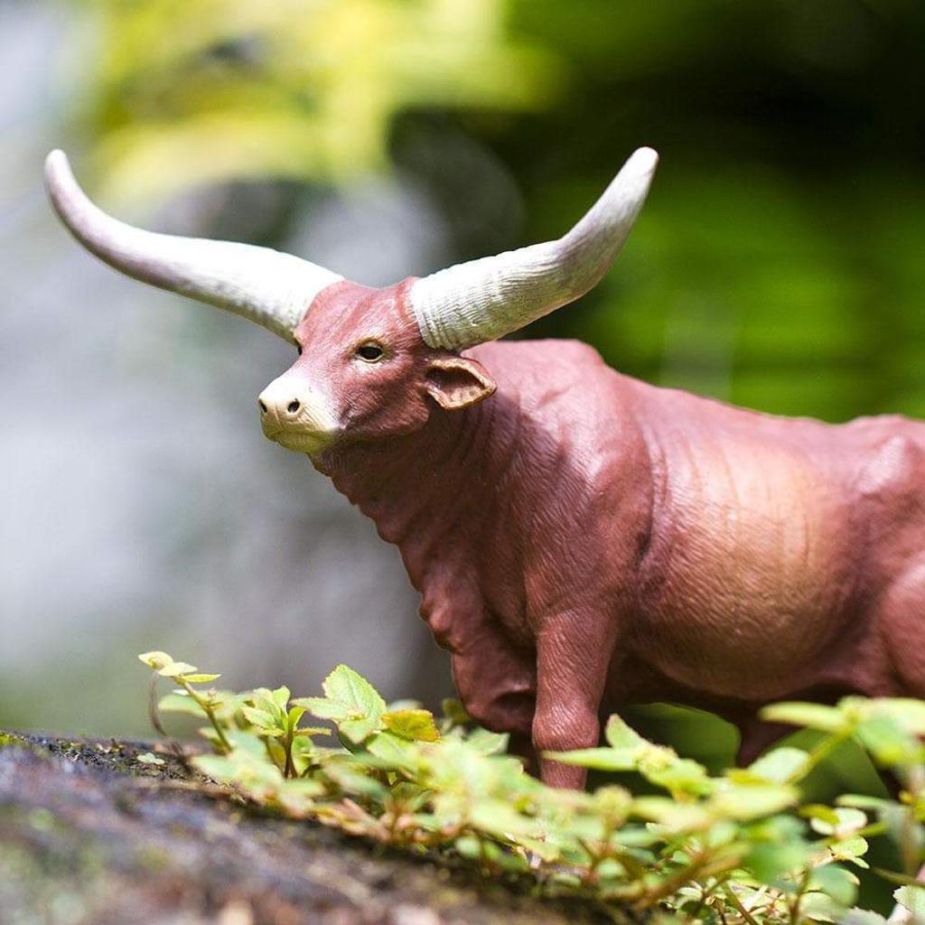 Safari Ltd Watusi Bull lifestyle
