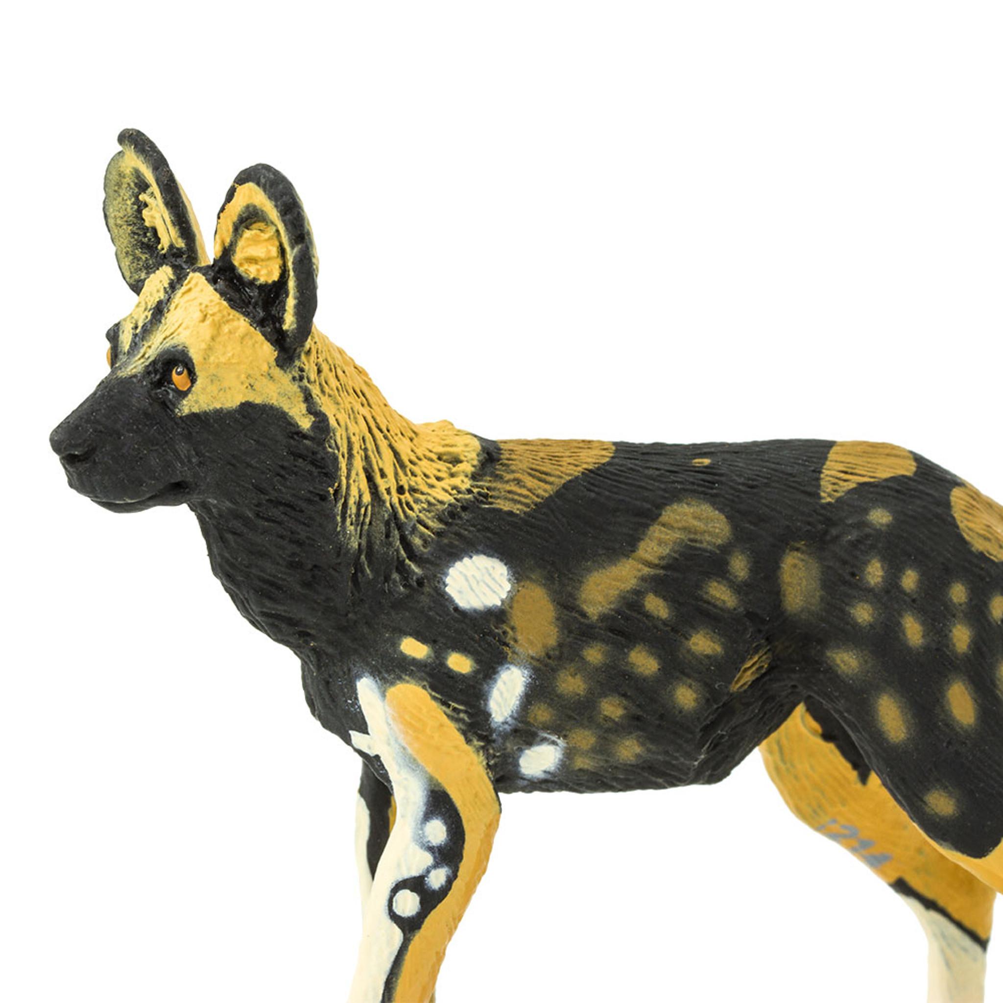 988b48d8609f African Wild Dog - MiniZoo