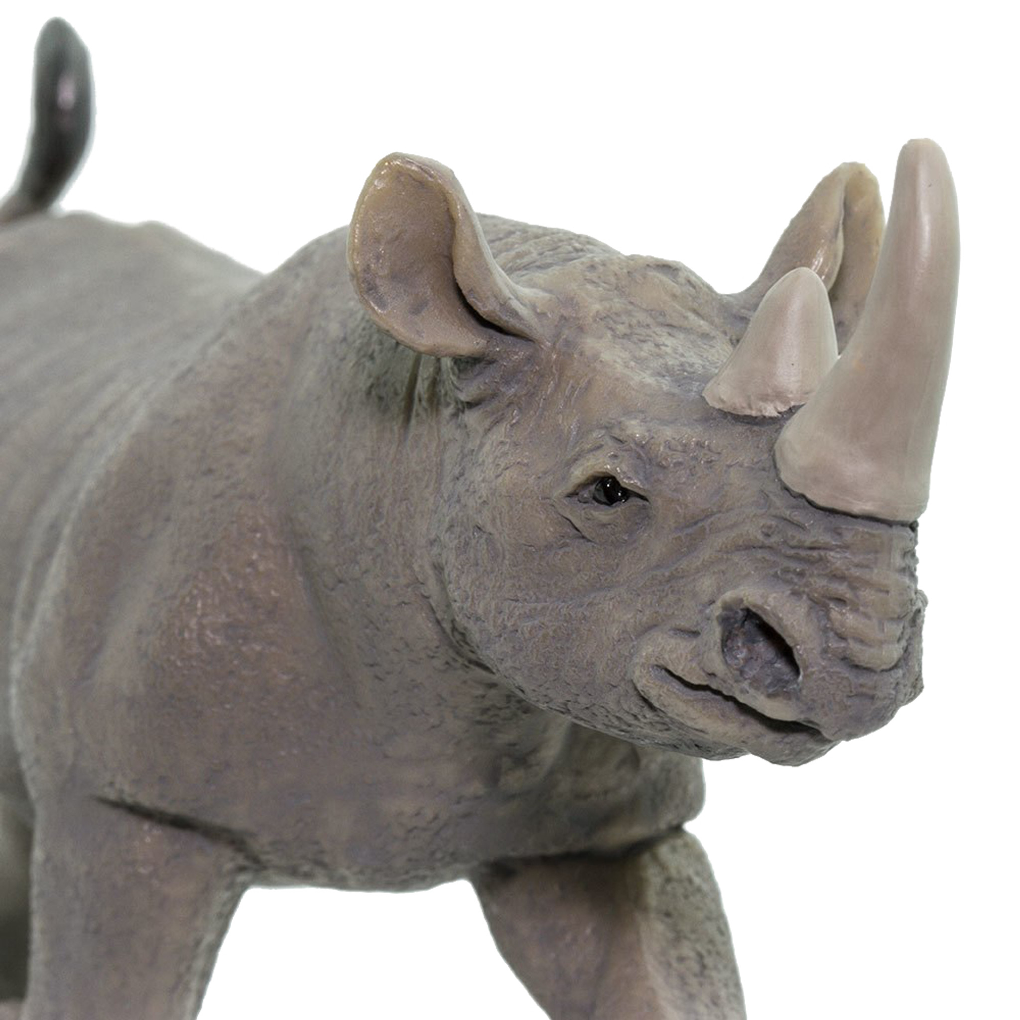 Safari Black Rhino 228929