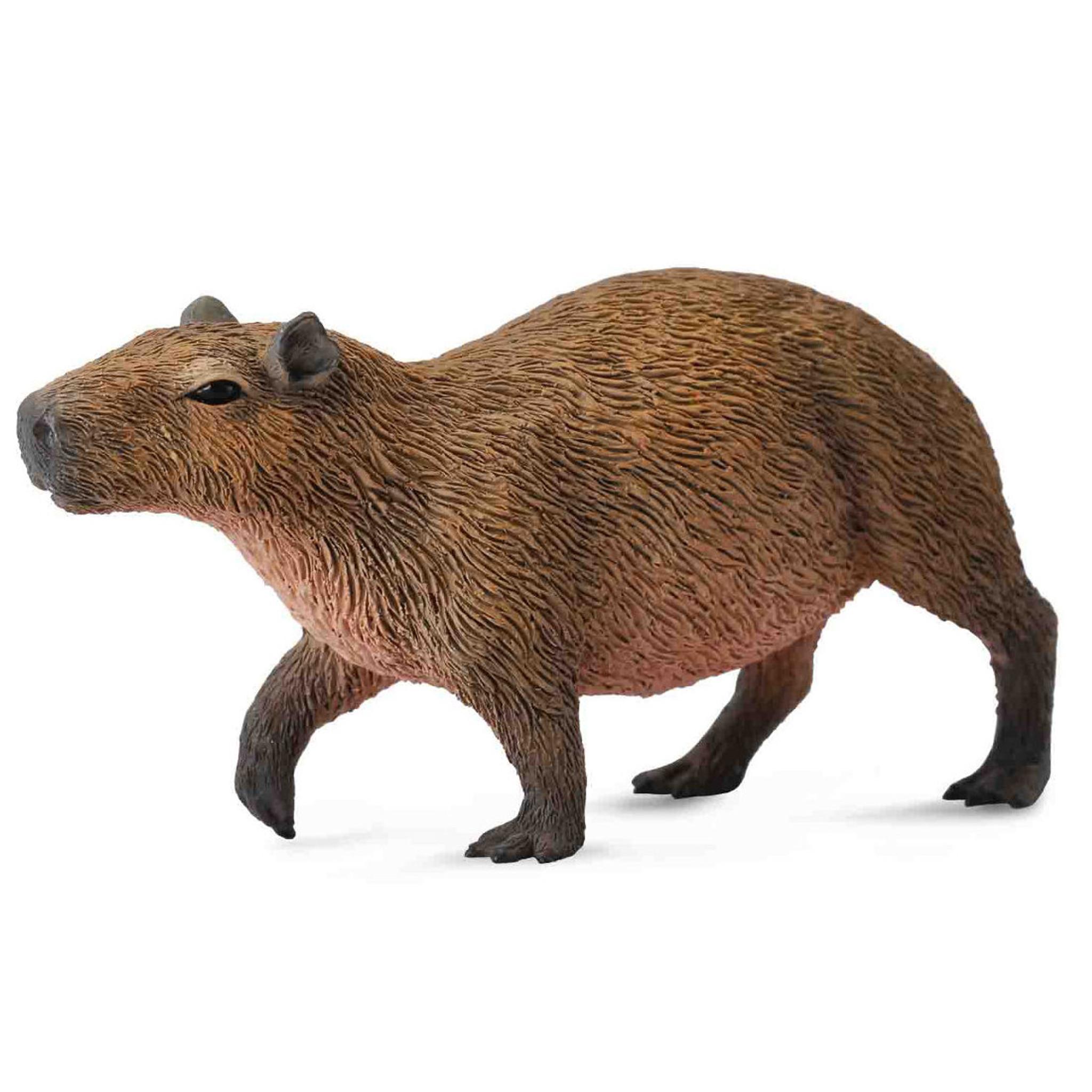 CollectA Capybara Bébés