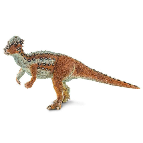 Safari Ltd Pachycephalosaurus 100350