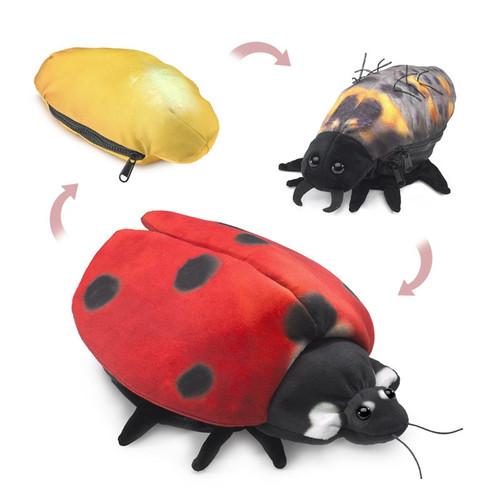 Folkmanis Ladybug Life Cycle Puppet