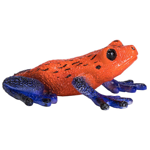 Mojo Poison Dart Tree Frog side view