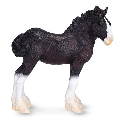 Mojo Shire Foal
