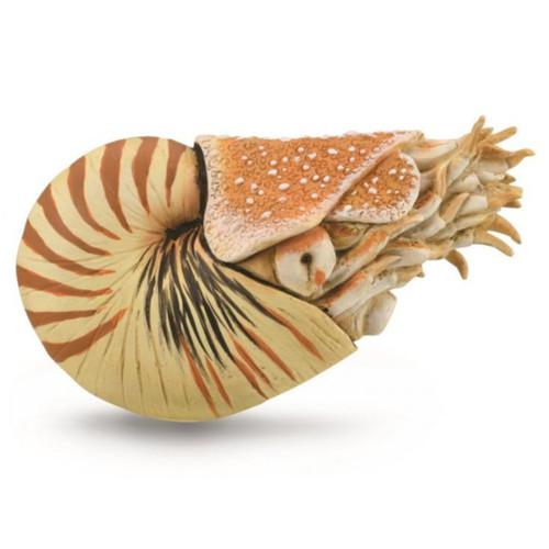 CollectA Nautilus Pompilius 88907