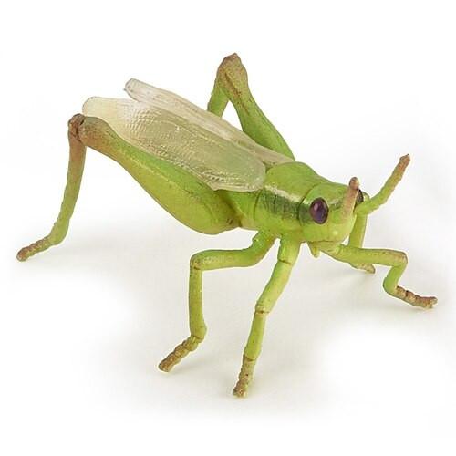 Papo Grasshopper