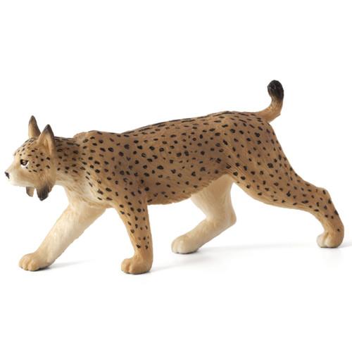 Mojo Iberian Lynx