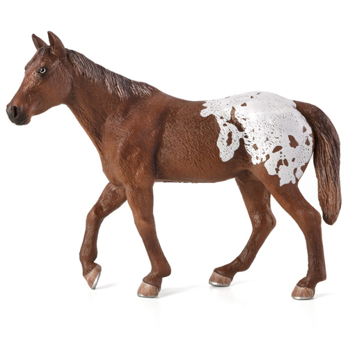 Mojo Appaloosa Stallion Chestnut