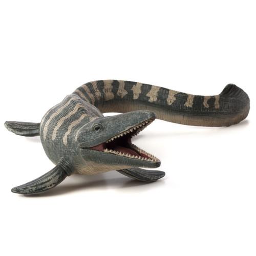 Mojo Tylosaurus