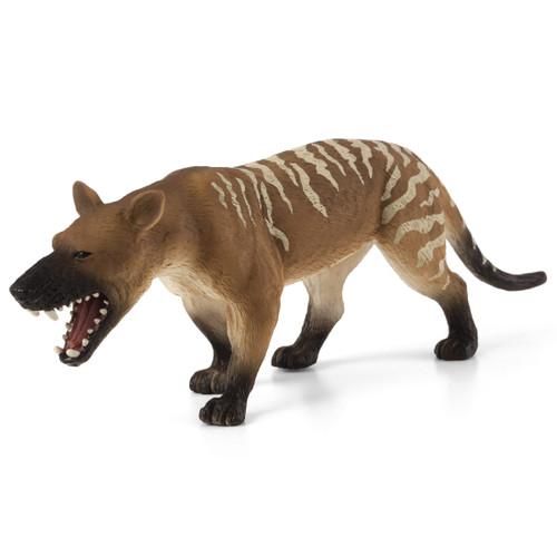 Mojo Hyaenodon Gigas