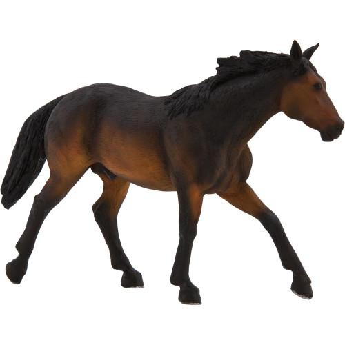 Mojo Quarter Horse Sooty Bay