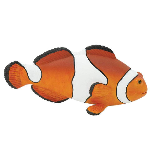 Safari Ltd Clown Anenomefish Incredible Creatures