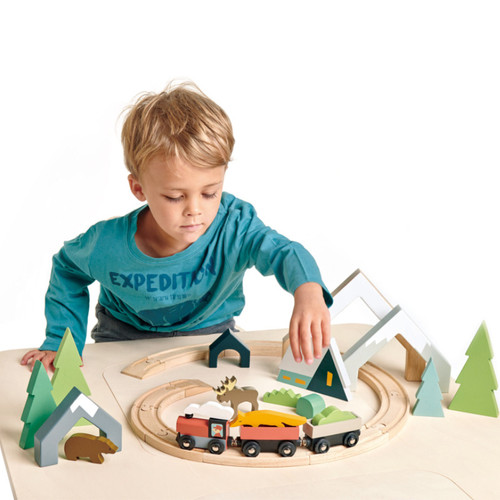 Boy playing with Tender Leaf Toys Treetops Train Set on table