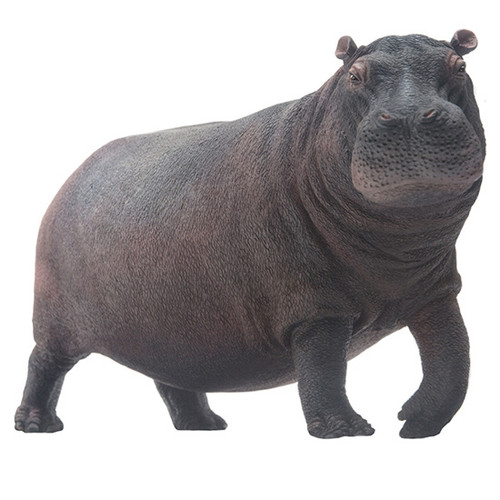 PNSO Dunkey the Hippopotamus Vinyl
