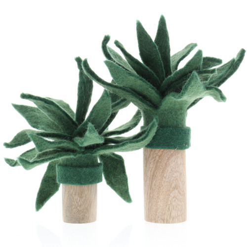 Papoose Palm Trees 2pc